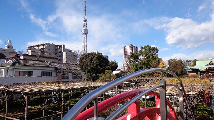 TokyoSkytree from Kameido-Tenjin