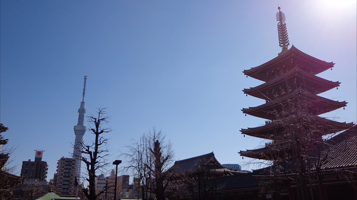 five-storied pagoda and TokyoSkytree
